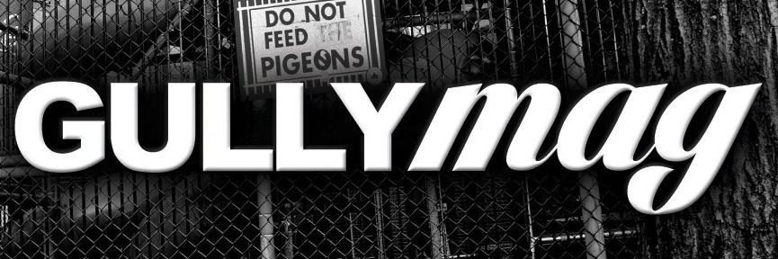 GULLY™